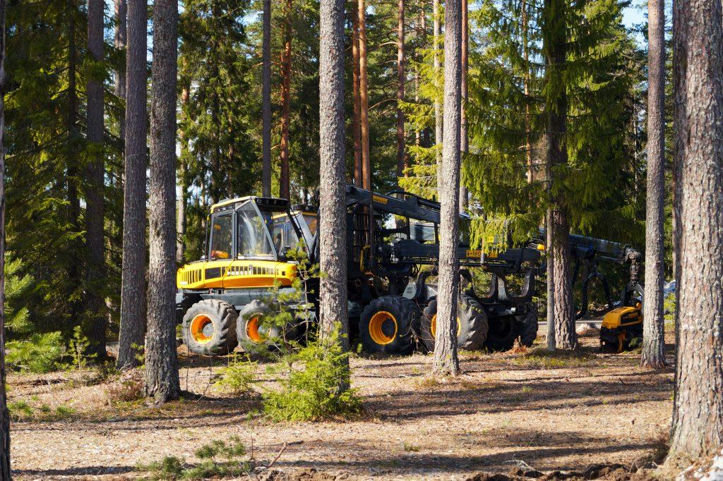 Keltainen metsäkone