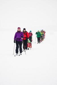 arktiset vaeltajat