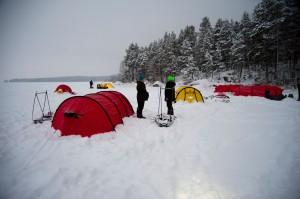 arktiset vaeltajat 4